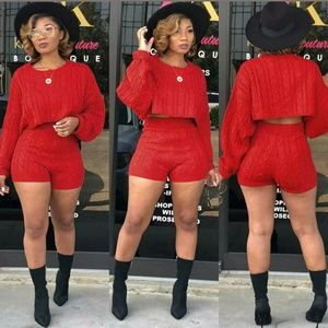 Pants - Knitted Sweater 2 Piece Long Sleeve Crop Top Set